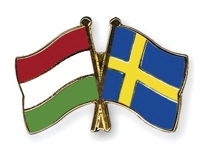 Magyar svéd